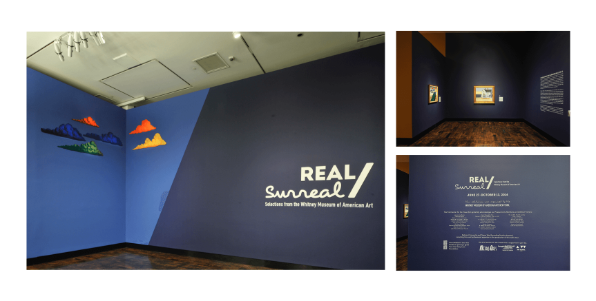 Real/Surreal: Installation